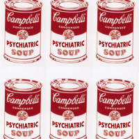 the combo - psychiatric soup