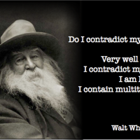 I contain multitudes - Walt Whitman