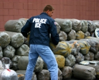 drug_enforcement_task_force