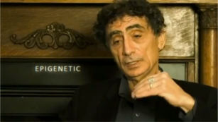 Genetics Myth 10