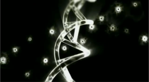 genetics myth predispositoin