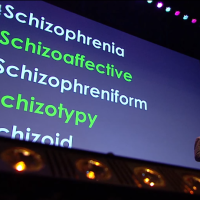 """Schizophrenia"" does not exist"