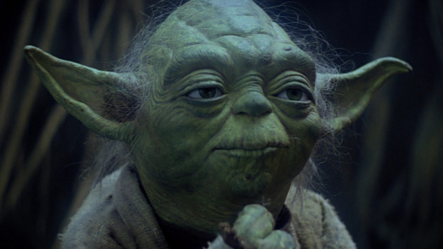 Yoda 8