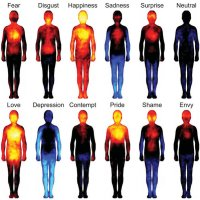 emotional body signatures