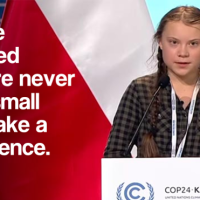 I've learned we are never too small to make a difference - Greta Thunberg